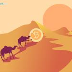 Власти Бахрейна создадут регулятивную песочницу для криптовалютной биржи Palmex