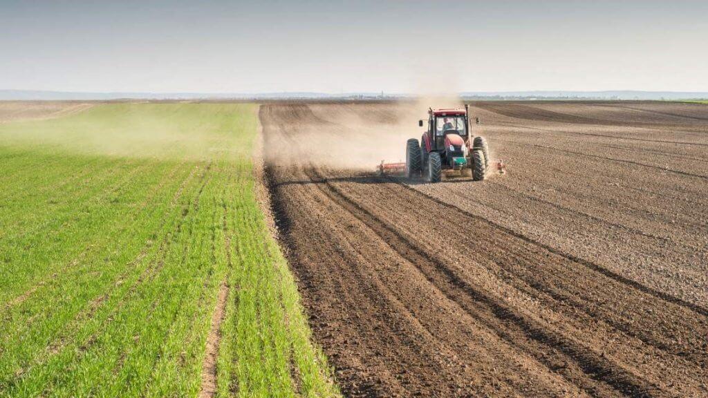 Российская криптодеревня. В Колионово фермеры отказываются от рубля в пользу криптовалюты