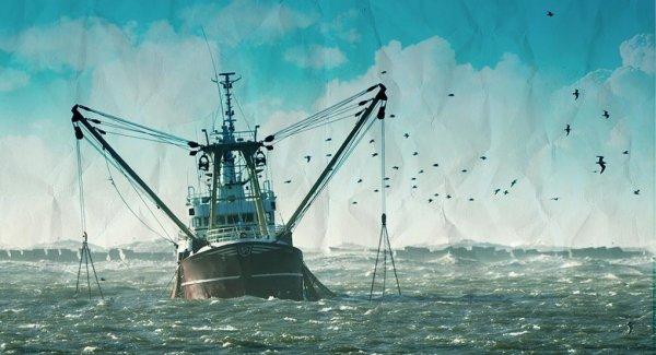 ФСБ запретит иностранцам перевозить рыбную продукцию в России