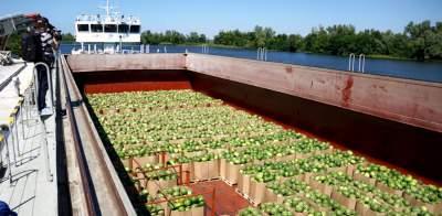 В Киев обещают поставить еще баржи с арбузами
