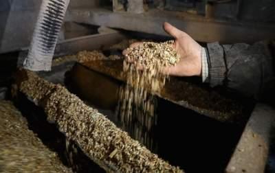 Украина снизила экспорт зерновых